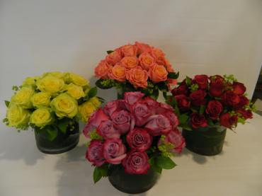 Two Dozen Roses-Hand Tied Roses  Spiral Design